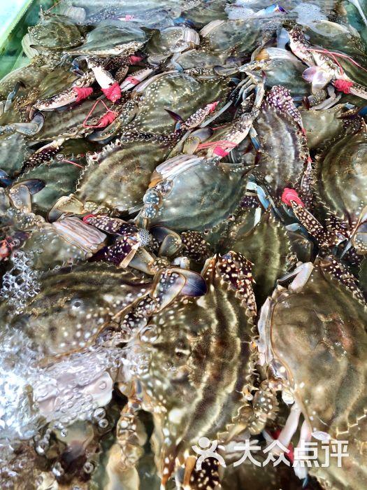南戴河海滨市场图片 - 第4张
