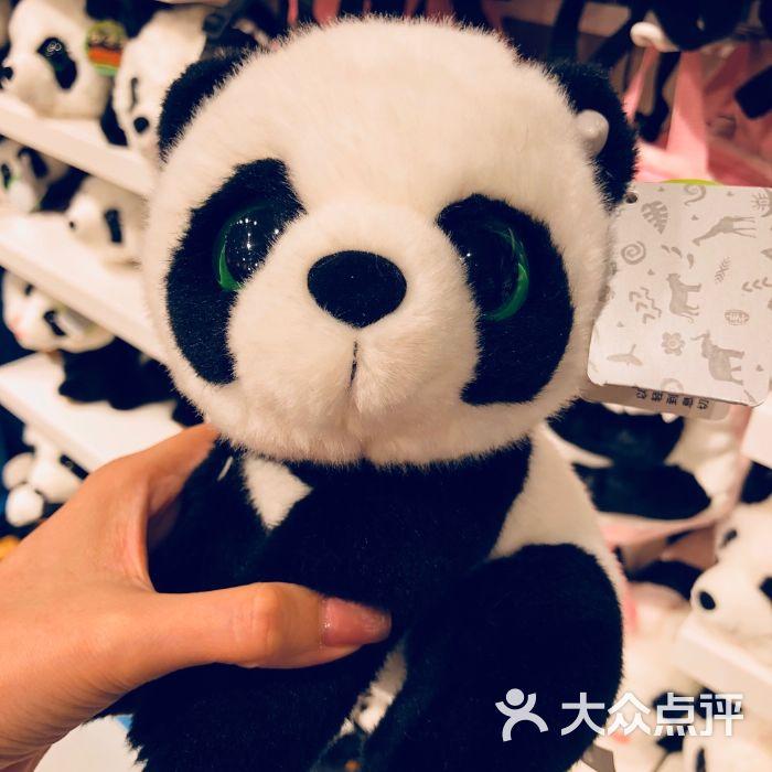 真实熊猫头像图片