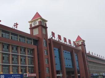 贺阳外国语学校