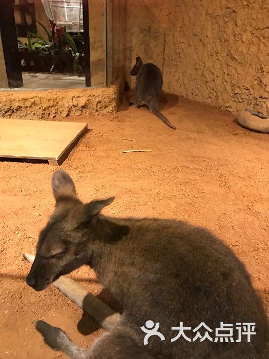 天津zoonly动物主题公园图片 - 第2张