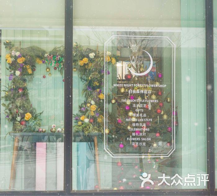 白夜森林花店橱窗图片 - 第40张图片