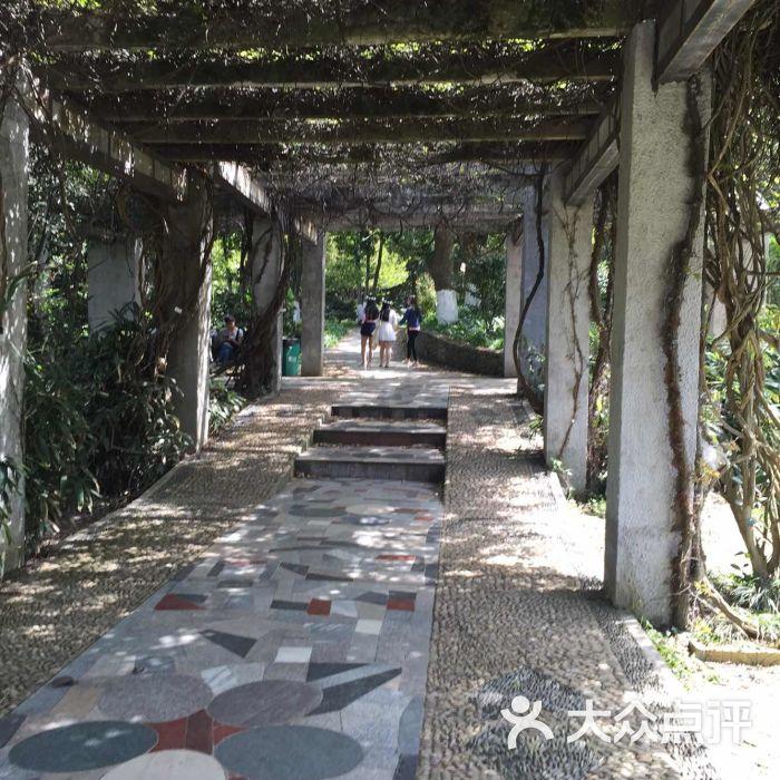 武汉动物园图片 - 第10张