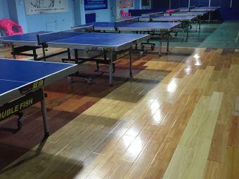 新视野乒乓球羽毛球馆