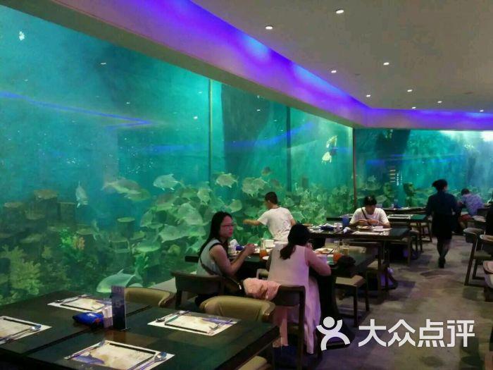 思明区 环岛路沿线 自助餐 荣誉国际酒店—梵尔纳海洋主题自助餐厅