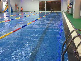 漳州市区成人游泳培训班