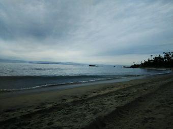 Laguna Beach Walks