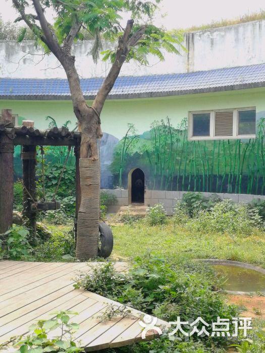 南昌新动物园图片 - 第1张