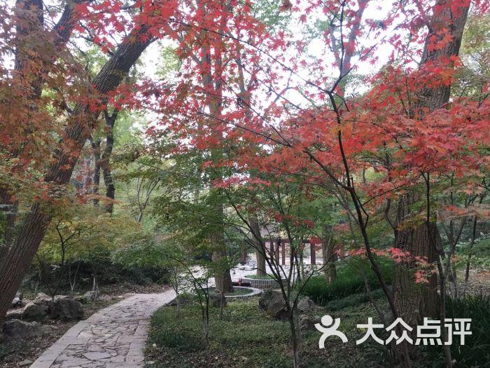 栖霞山名胜风景区图片 - 第379张