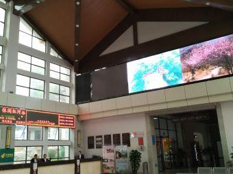 陕西省红河谷森林公园游客中心-停车场