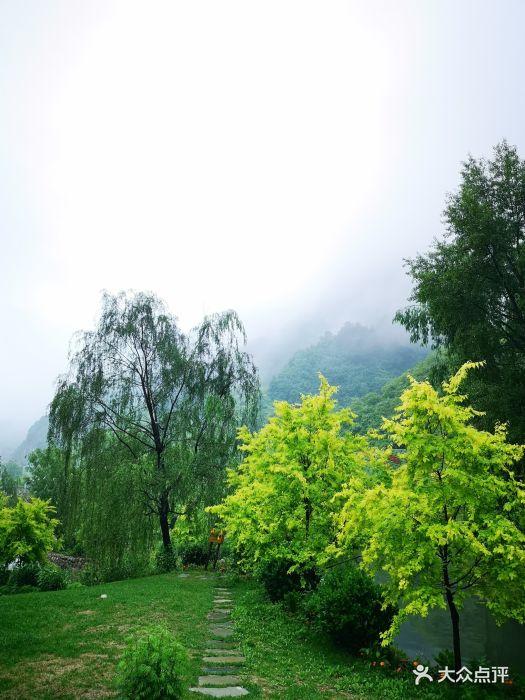 漫山花溪谷景区图片 - 第139张