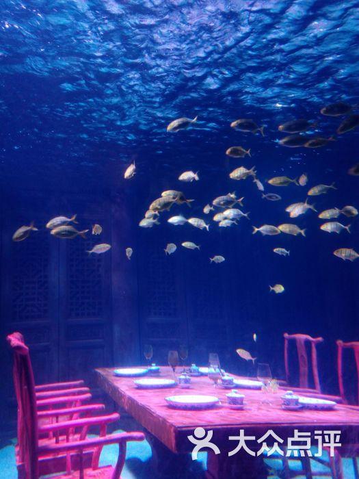 上海长风海洋世界图片 - 第1张图片