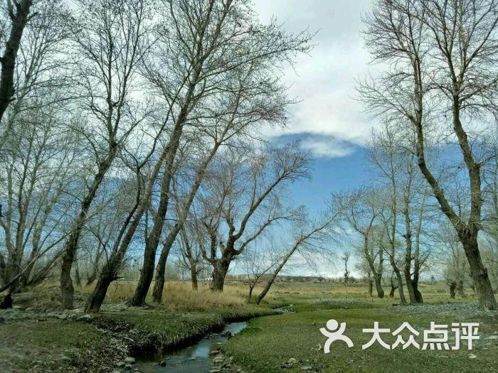 吴嘉_2181上传的图片