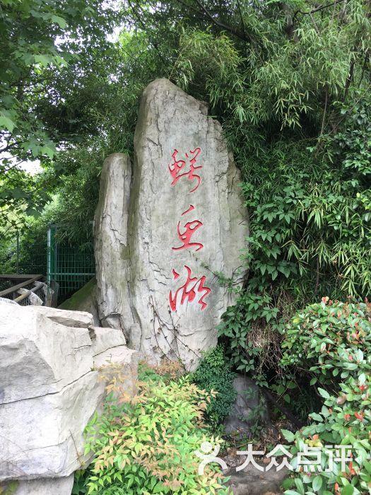 南昌新动物园图片 - 第5张