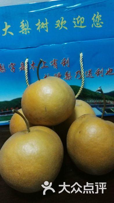 大梨树风景区-图片-沈阳周边游-大众点评网