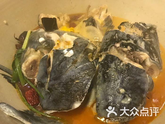 千岛湖蒸汽鱼图片 - 第16张