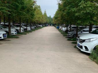 日照海滨国家森林公园停车场