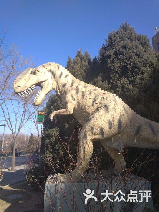 中国古动物馆图片 - 第244张