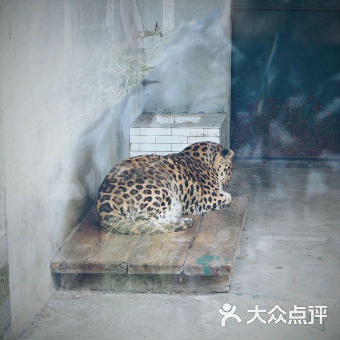 泰州市动物园图片 - 第1张