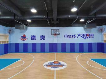 德奥小篮球(东平店)