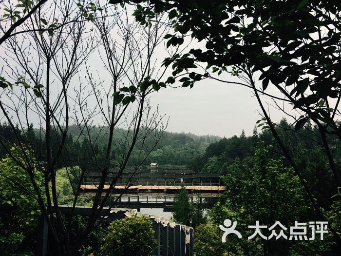 黄水假日森林酒店-图片-石柱土家族自治县酒店-大众