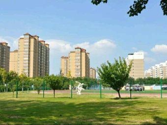 安阳市开发区高级中学
