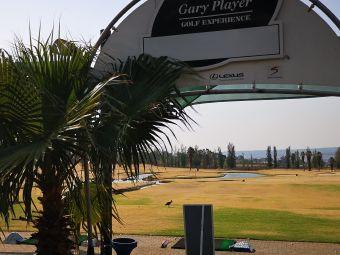 Momentum World of Golf
