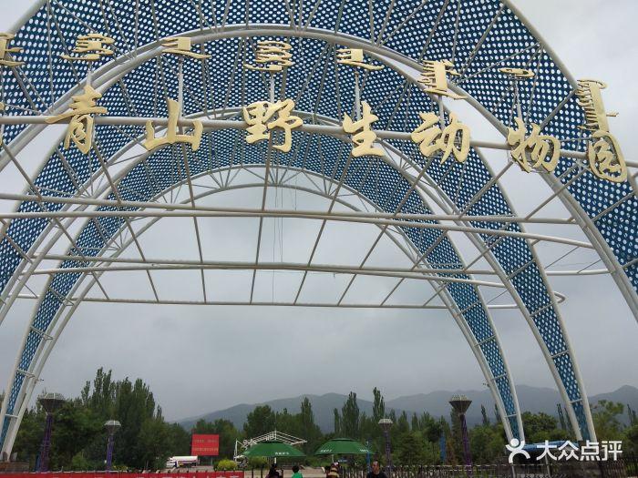 大青山野生动物园图片 - 第25张
