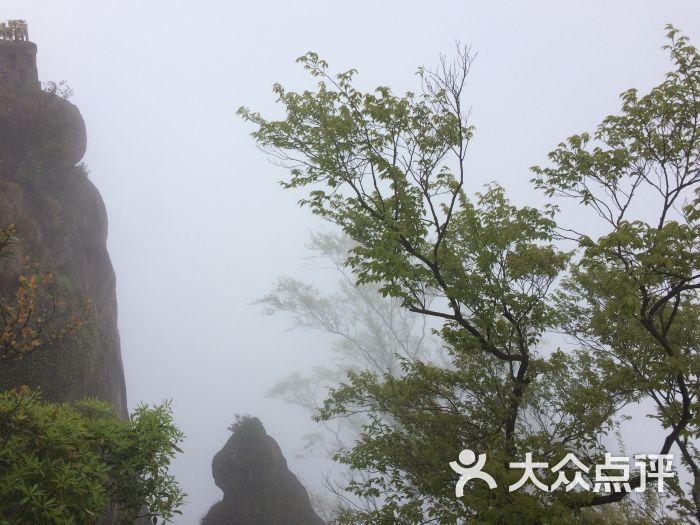 古剑山森林公园-图片-重庆周边游-大众点评网