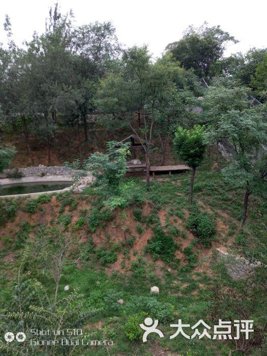 石家庄动物园图片 - 第3张