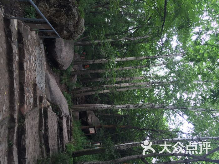 松山国家森林公园松山森林旅游区图片 - 第1001张
