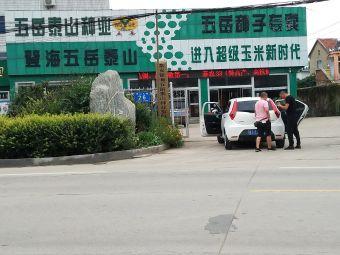 泰安市五岳泰山农作物种子研究所
