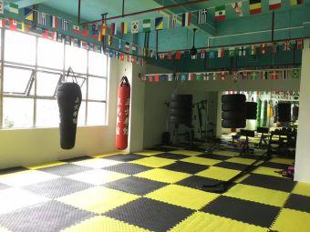 正戈拳馆·正戈体育训练基地
