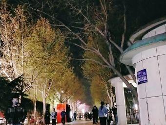 桓台文体中心B座