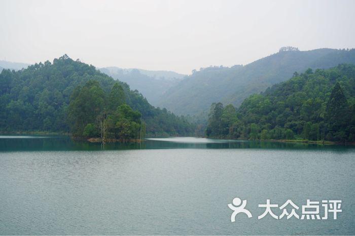 仙鹤湖度假山庄-图片-鹤山市酒店-大众点评网