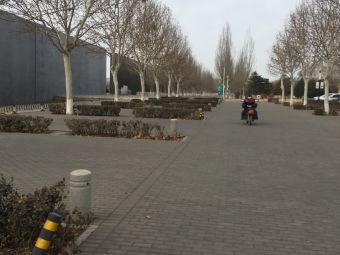 唐山地震遗址纪念公园·停车场