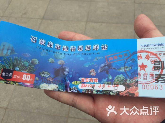 石家庄动物园海洋馆图片 - 第144张