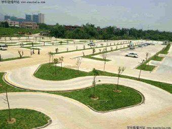 新疆大陆桥驾校
