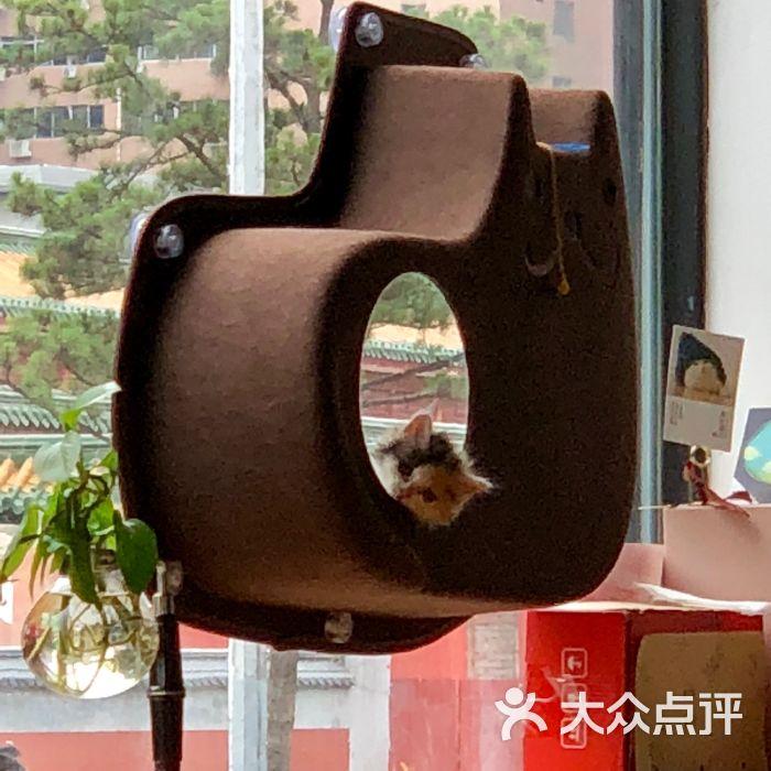 窠咖啡:今天没有在小寨店选阿芙佳朵是因.西安梦美食特殊物语客人图片