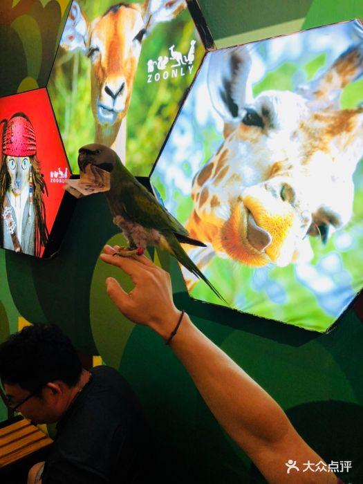 天津zoonly动物主题公园图片 - 第579张