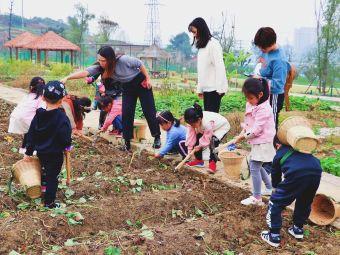 九子农场教育示范基地