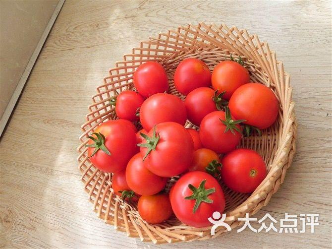 豪人峰汇-雕像-佳木斯美食-大众点评网昆明图片大亚泰美食城图片