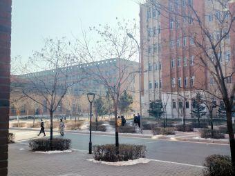 东北大学(浑南校区)