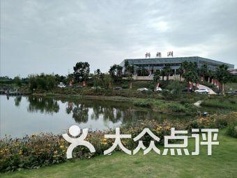 新興鎮柏楊湖停車場