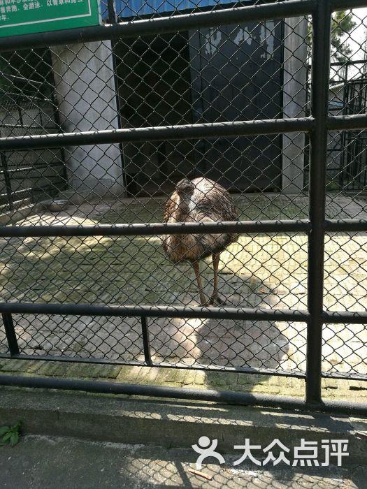 南通动物园图片 - 第22张