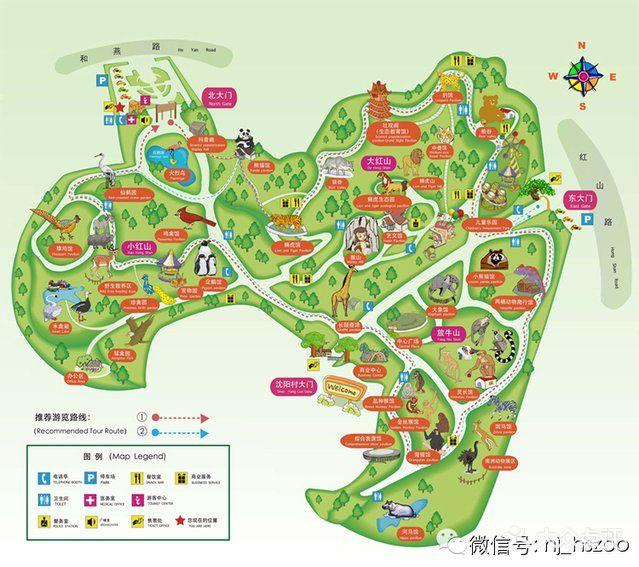 红山森林动物园图片 - 第7张