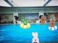 稀土国际大酒店游泳馆
