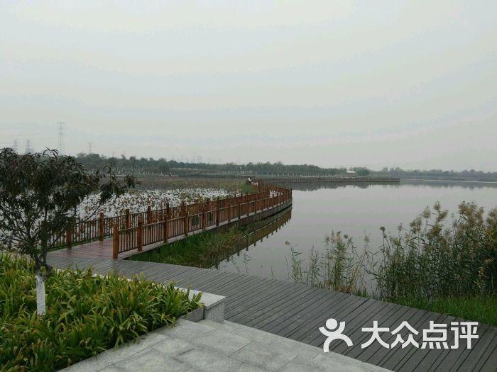 东丽湖风景区--环境图片-天津周边游-大众点评网