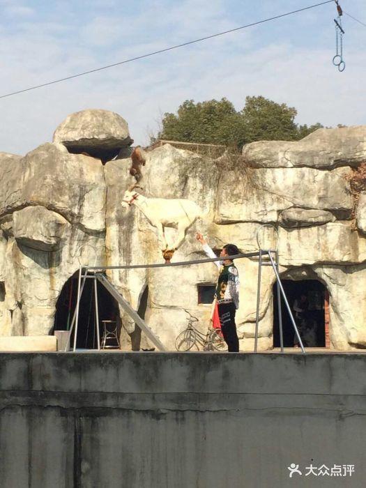 南昌新动物园图片 - 第394张