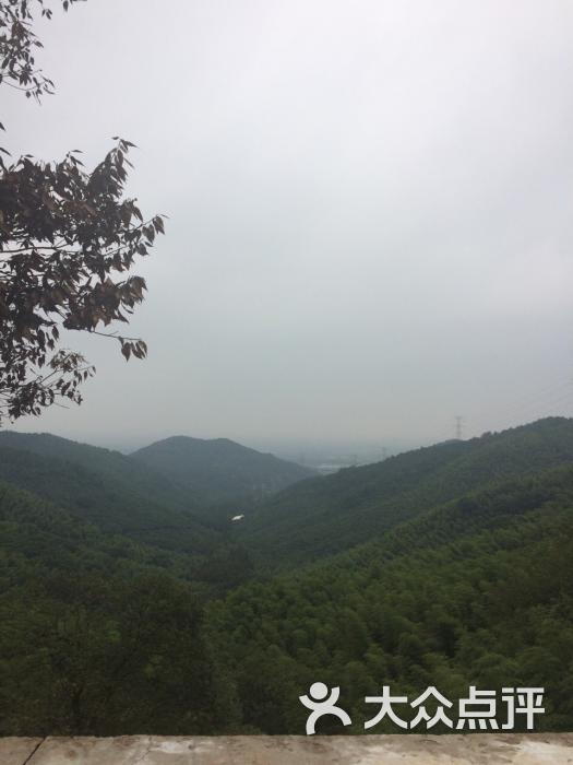 东明山森林公园-图片-杭州周边游-大众点评网