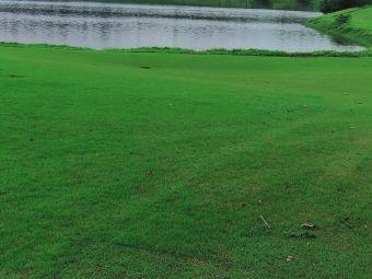 白鹭湖高尔夫球俱乐部